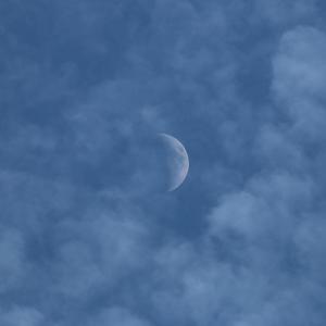 今日の雲 「雲、飛行機、月」