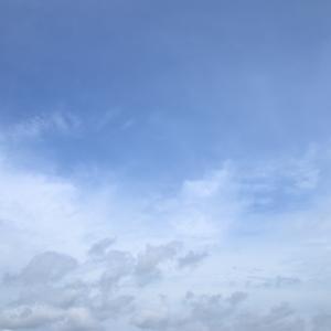 今日の雲 「それどころでは」