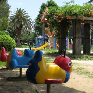 街中の動物39 「鳥とサイ?」