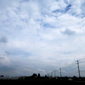 今日の雲 「ひつじ雲」