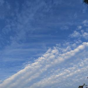 今日の雲 「安心、安全」