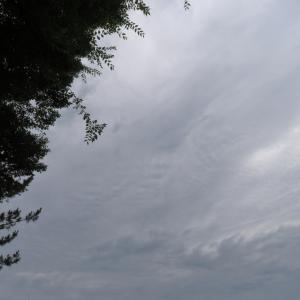 今日の雲 「キャプチャー」