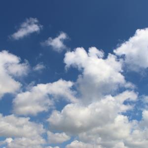 今日の雲 「FALL GUYSとのコラボ」