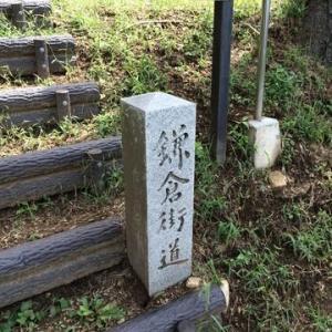 鎌倉街道と故郷が見える丘