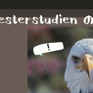 【#23】Orchesterstudien の授業