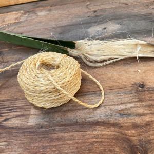 アガベの繊維を編む!?