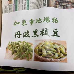 お取り寄せ ふるさと納税で丹波篠山の枝豆