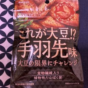 【肉を食べない生活】『これが大豆?!手羽先味』ってまずい?美味しい?【おつまみに最高】