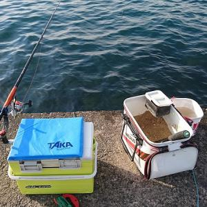 浜名湖紀州釣り 一応リベンジしました。