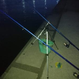 浜名湖ウナギ釣り またでかいのバラシて残念