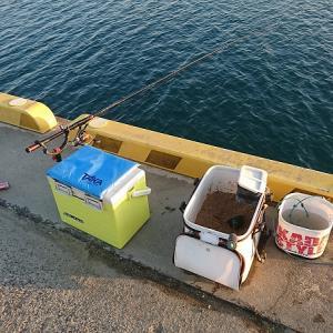 浜名湖ウキダンゴ初めての場所は、やっぱりチンタ