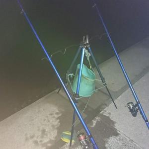 浜名湖ウナギ釣り ようやくポイントで釣果!