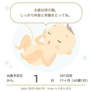 40w1d 妊婦健診(誘発分娩、決定!!!)
