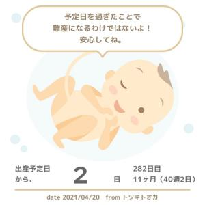 40w2d 入院します!!!
