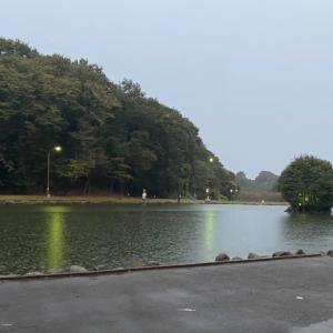 浅い...【F.O王禅寺】(107)2020年10月7日(水)