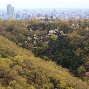 金華山 2020/04/03