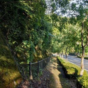日盤吉方。早朝歩いて往復60分が出来る季節になりました。