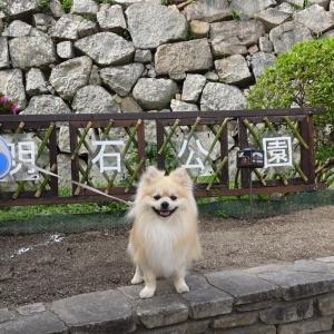 【明石】お食事処も二軒ある、兵庫県立明石公園へ行ってきた。