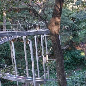 【小野市】全長100mの超ロング滑り台!夢の森公園へ
