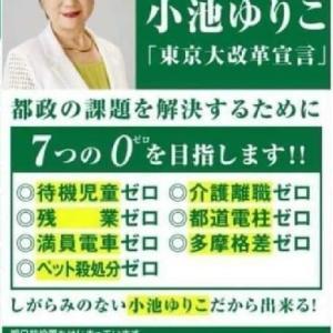 東京都民の皆様、本当に小池百合子が都知事で良かったのですか?・・・いまさら、遅いけれど