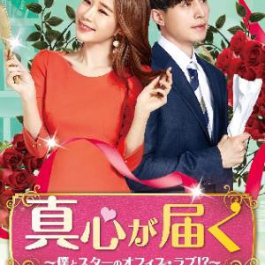 『真心が届く~僕とスターのオフィス・ラブ!?~』 (2019年 韓国・tvNドラマ)