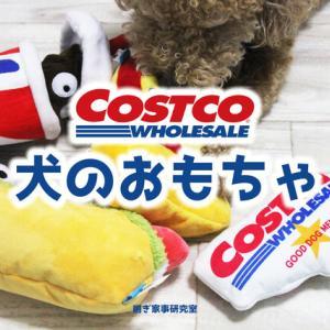 ワンコも【COSTCOメンバー】に!!コストコの犬のおもちゃが可愛すぎる。