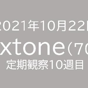 【徴収額増加!】ネクストーン定期観察【10月22日】