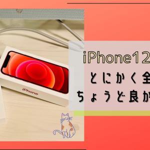 【買って正解!】iPhone12 mini!全てが丁度よかった話
