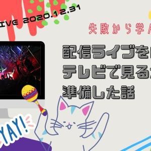 【This is嵐】生配信ライブを自宅のテレビで見るために準備した話