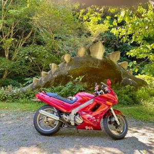 2年ぶりの恐竜とバイク