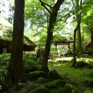 緑の中のPOP.COM eE(鳥取県みたき園)1