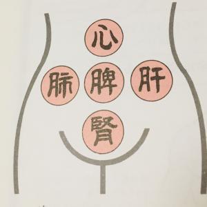東洋医学的体の治し方