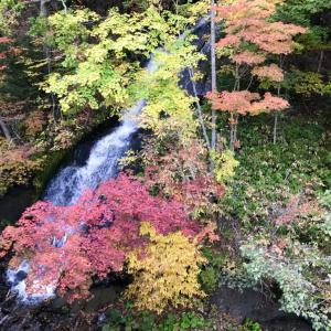 恵庭渓谷の紅葉は平日だと存分に楽しめる