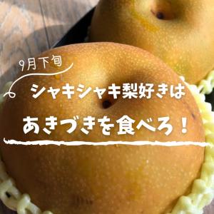 9月下旬からのシャキシャキ梨は【あきづき】を食べるべし!