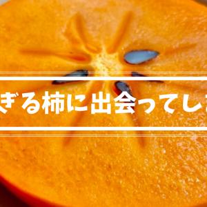 輝太郎という柿に出会ってしまった。