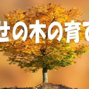 幸せの木の育て方を購入する前に株式会社ジャパンコミュニケーショントレーニング協会の噂と詳細を検証