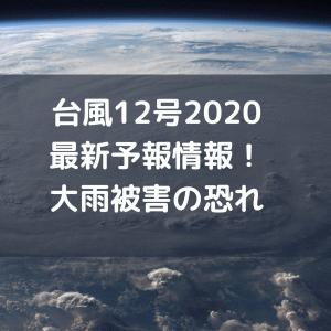 台風12号2020最新予報情報!大雨被害の恐れ