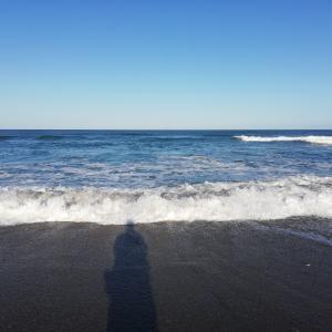 11月15日(日)釣果報告 なぜ大潮は釣れないのか?だれか教えて!!