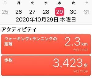 10-29_日本人の風情 ~十三夜~