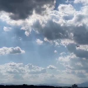 7-26_台風8号が接近!?