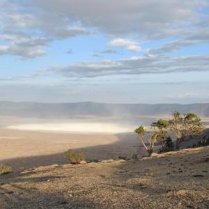 ンゴロンゴロ保全地域(タンザニア)