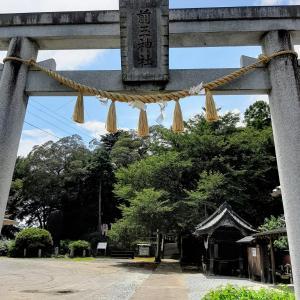 行田市 前玉神社、癒し猫のお出迎えが人気。