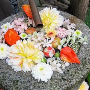 行田八幡神社の花手水は、いつまで見られる?花手水weekとして再開しました!