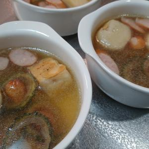 自家製乾燥ゴーヤdeスープを作りました❗果たしてお味は?