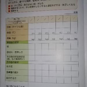 エンハーツ 副作用 8日目