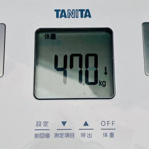 本日の体重と体脂肪率【21日目】