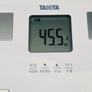 【順調に減る体脂肪】本日の体重と体脂肪率【49日目】