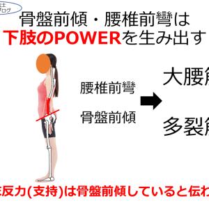 骨盤前傾・腰椎前彎は下肢のPOWERを生み出す