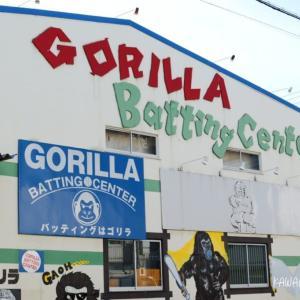 【南鳩ヶ谷】ゴリラバッティングセンターは硬式球もソフトボール球も打てちゃう