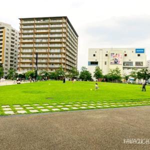 【並木元町】アリオ川口前の芝生広場が開放されてた